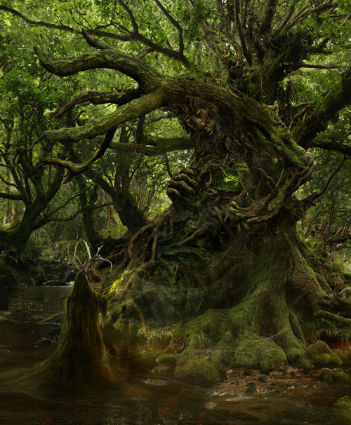 http://www.philmcdarby.com/images/uploads/TheGreenManAwakens_Fin_500.jpg